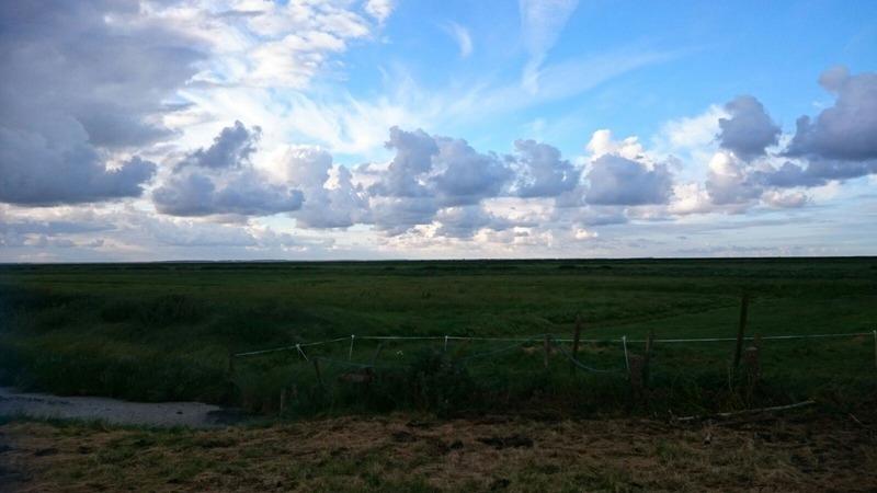 Goboony roadtrip Nederland leukste uitjes Friesland Seedykstertoer