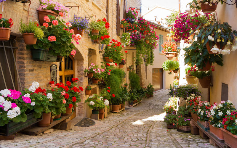 Goboony Italy Spello Streets Flowers colourful quaint