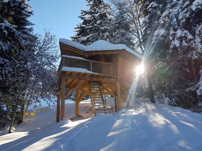Goboony Homecamper Blog Winter Chartreuse Treehouse