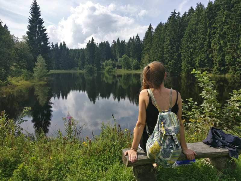 Met camper naar Harz natuur