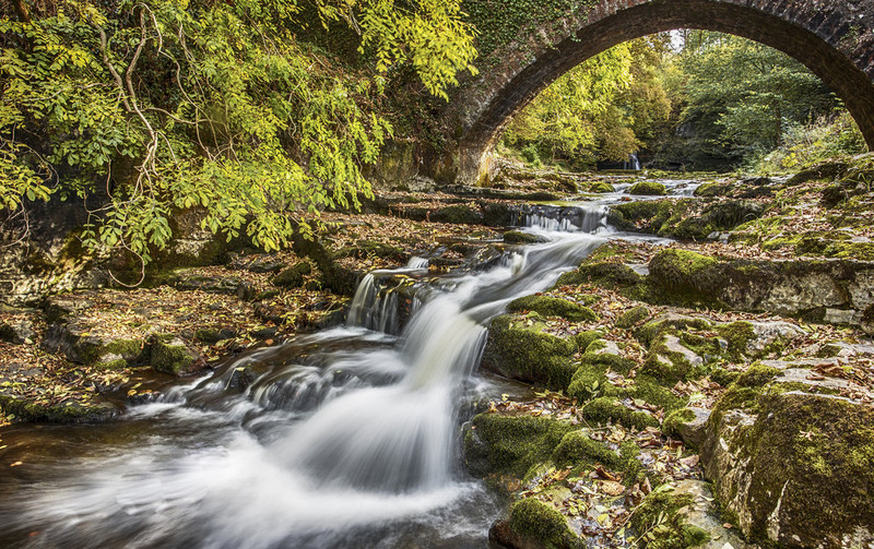 Goboony Spring Yorkshire Dales bridge stream