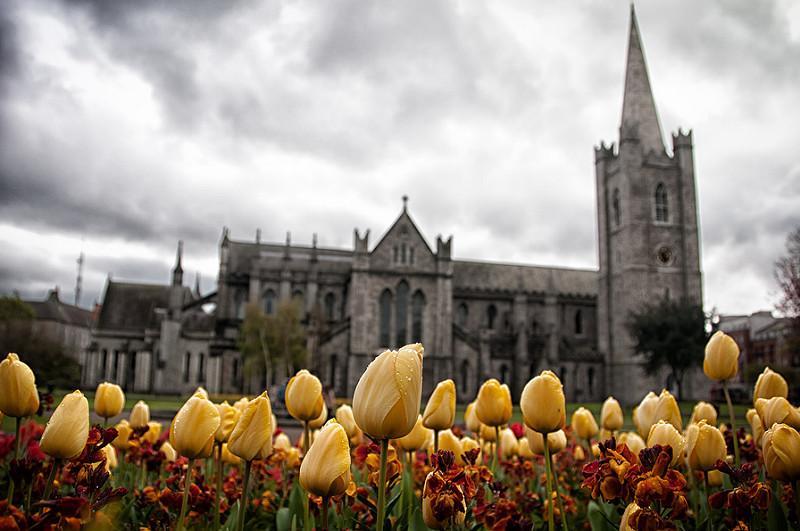 Goboony_Ireland