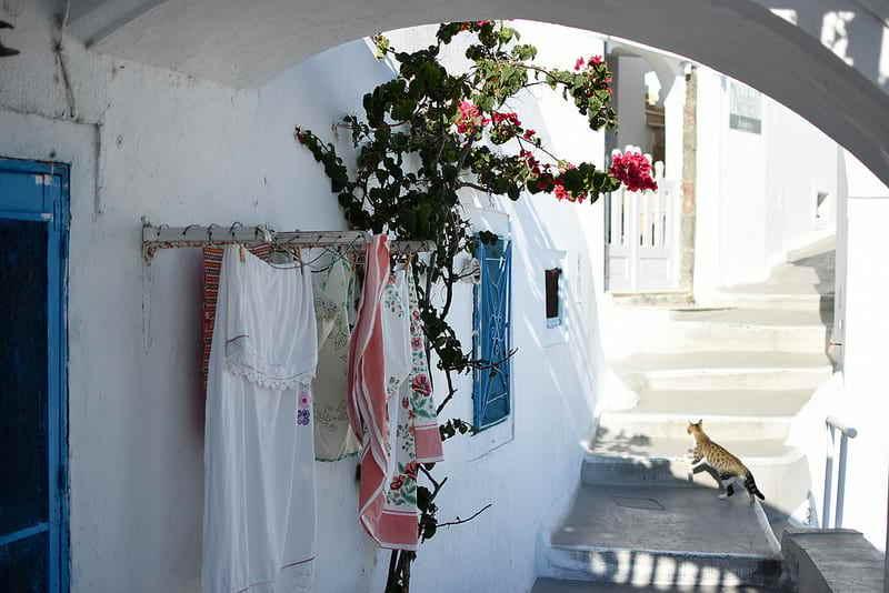 Goboony_Grecia
