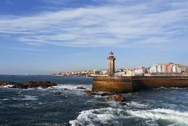 Goboony_Porto_
