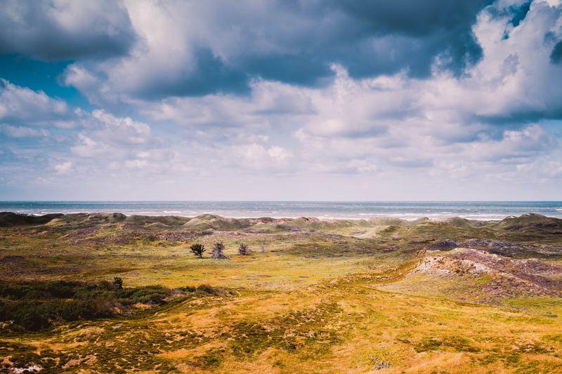 Goboony camperplaatsen Denemarken duinen