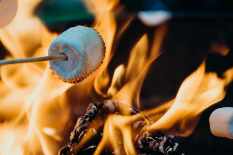 Goboony campfire H2 roastingmarshamallow