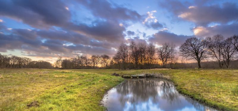 Goboony-camperplaatsen-Drenthe_meertje