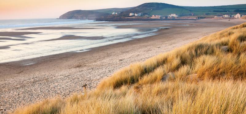 Goboony Devon H2 Devon Beach Grass