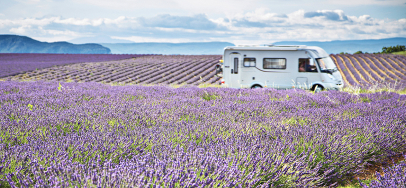 Goboony France H2 Provence Lavender Motorhome