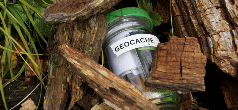 Goboony Geocaching H2 Geocache Wood Forest GPS