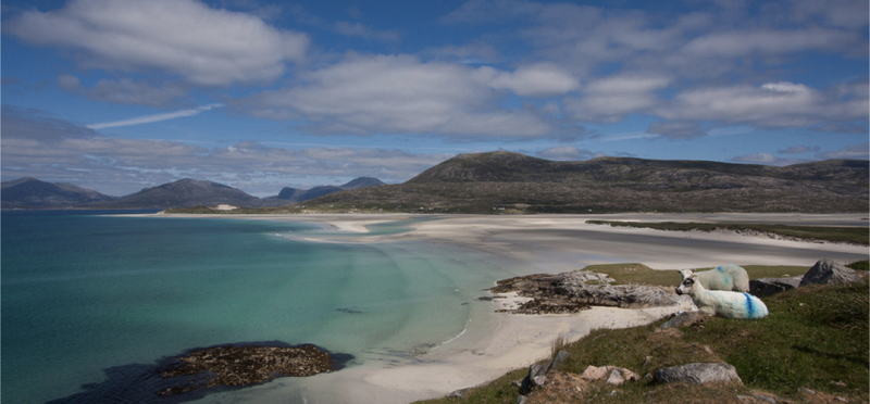 Goboony Luskentyre Beach H2 Isle of Harris Scotland