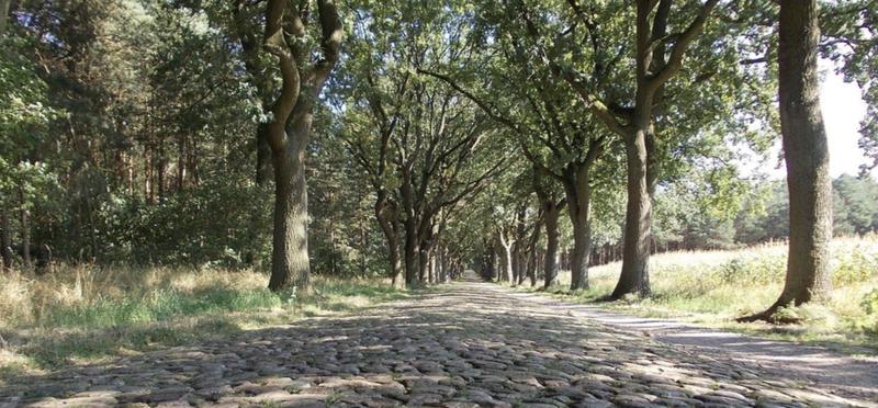 Winter Motorhome Storage Checklist H2 Trees Nature Sun Road