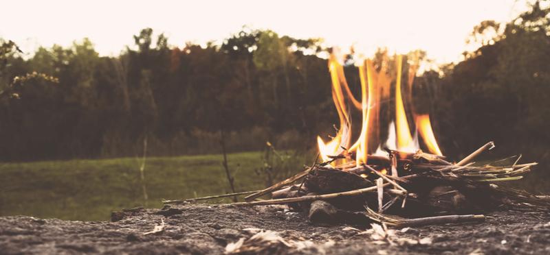 Goboony campings Nederland herfst