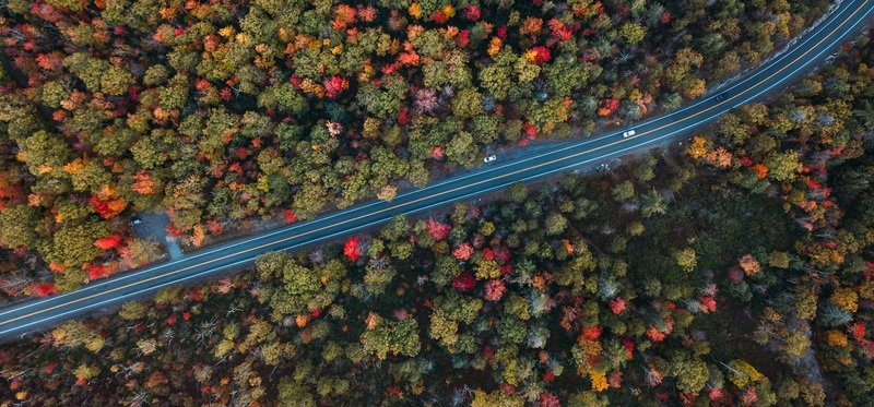 Goboony French Motorway Tolls H2 Highway Forest Birdview Cars Autumn