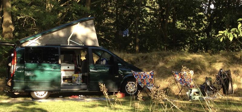 Goboony Motorhome Campervan Van Life H2 Forest