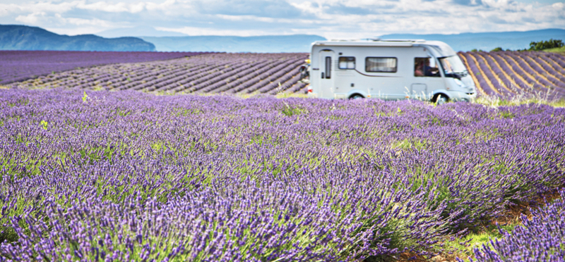Goboony Wild Camping France H2 Lavender Field Campervan Motorhome