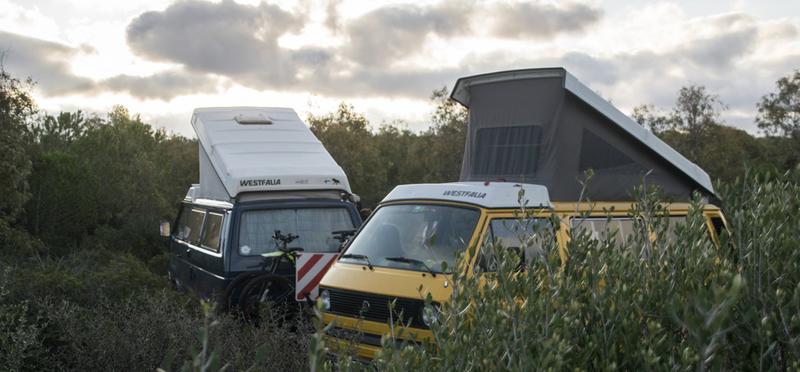 Goboony South West Coastal 300 SWC H2 Campervans Nature