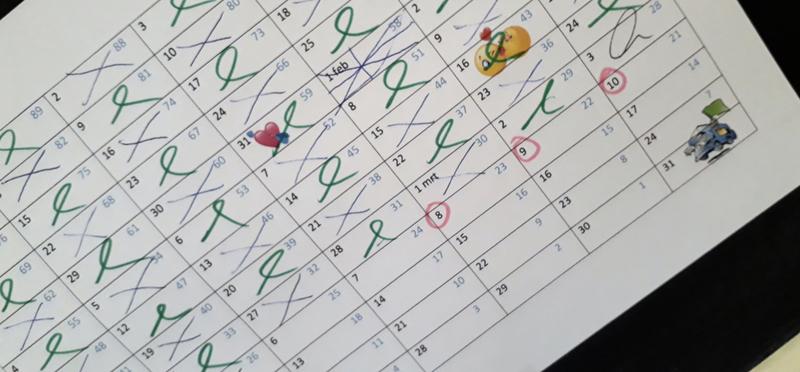 Goboony geluk eigen camper aftelkalender
