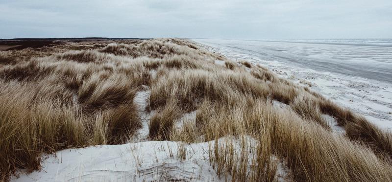 Goboony Rustige stranden in Nederland Foto 2