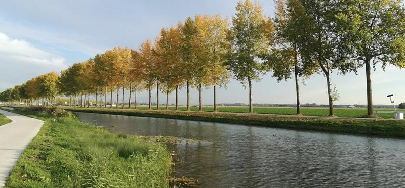 Goboony camperplaatsen in Gelderland