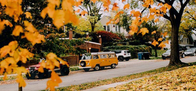 /content_autunno_1.jpg