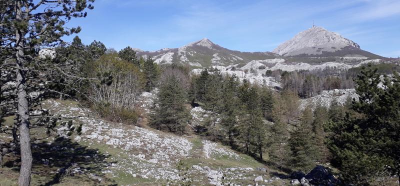 Goboony Guus Sandra Montenegro Nationaal Park Lovcen