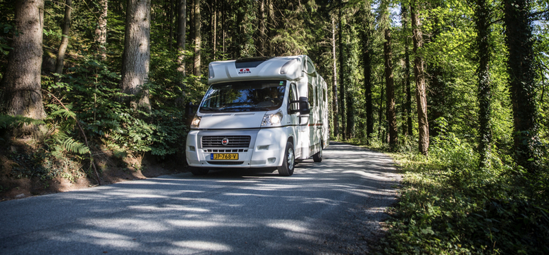 Goboony New Forest Motorhome H2 Tree