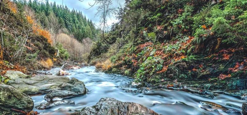 Goboony Natuurcamping Ardennen beekje