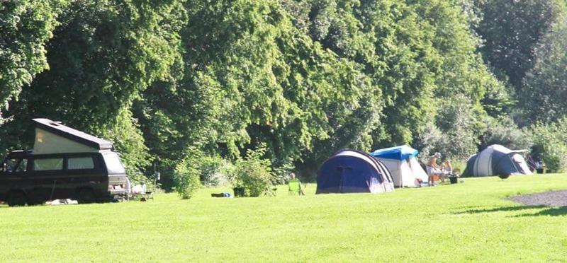 Goboony Natuurcamping Ardennen Beau Reve kampeerveld