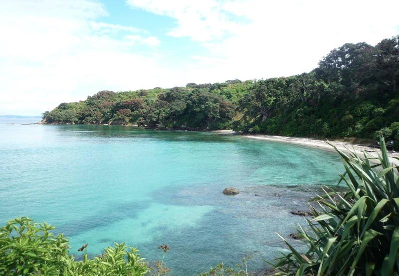 Camper huren in Nieuw Zeeland Tiritiri Matangi Island