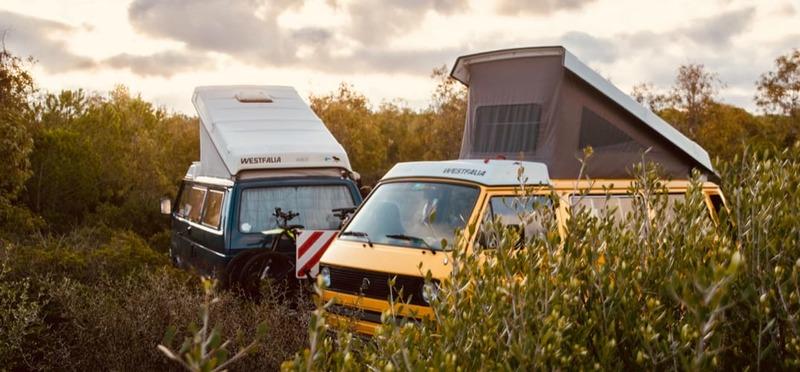 Goboony Top Campings Toscane VWT3 struiken