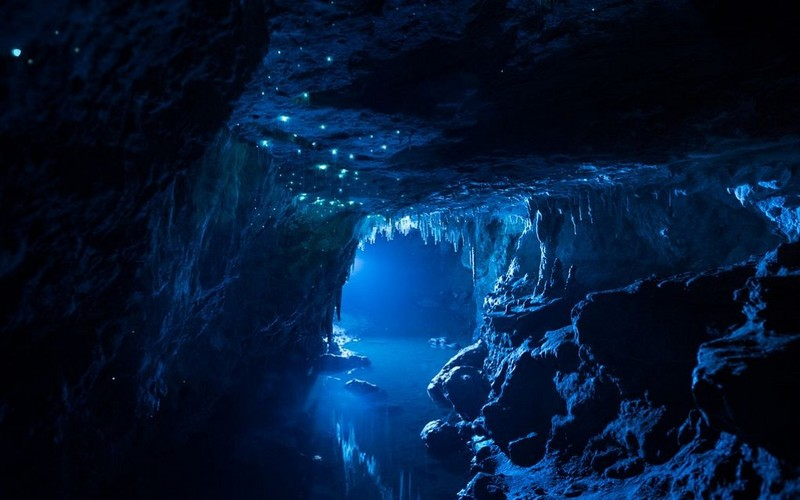 Camper huren in Nieuw Zeeland Waitomo Caves