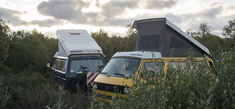 Goboony campings aan zee in België