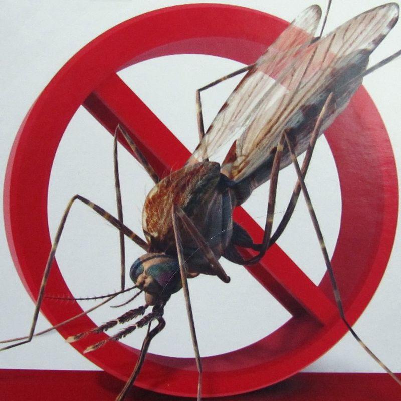 Tips tegen muggen plaats een Anti muggen stekker in je camper