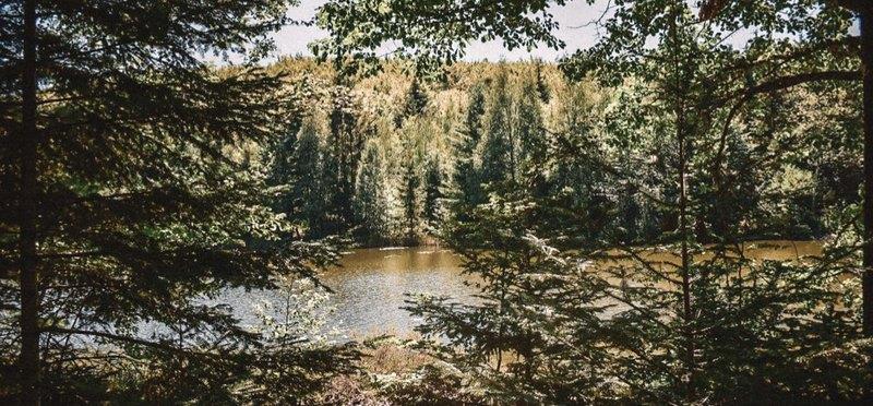 Goboony campings Vogezen