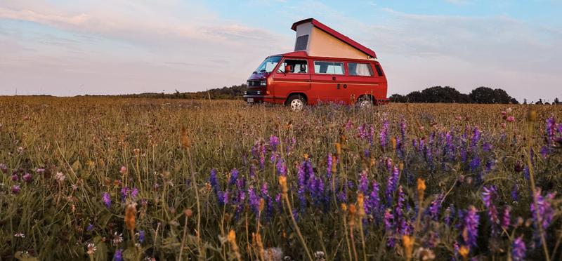 Goboony campervan VW h2 wild camping camper