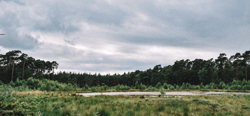 Goboony Mooiste plekken van Nederland Vechtdal