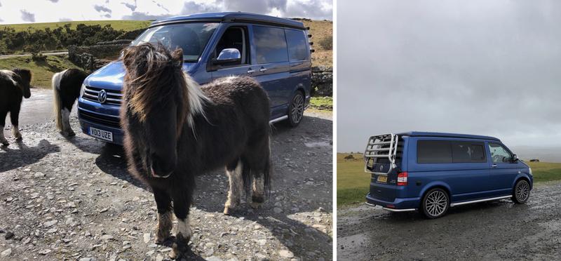 Goboony campervan motorhome h2 devon england ponies
