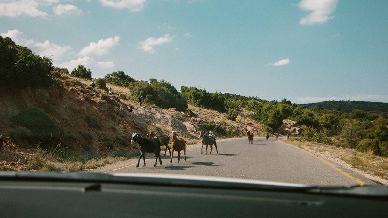 Goboony met de camper naar Griekenland