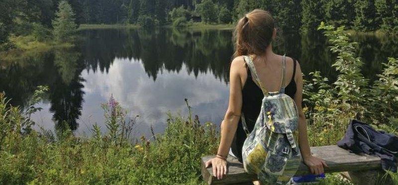 Goboony met de camper naar de Harz natuur