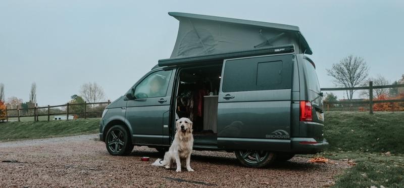 Goboony op campervakantie met je hond