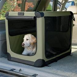 Hond veilig in bench tijdens je camperreis