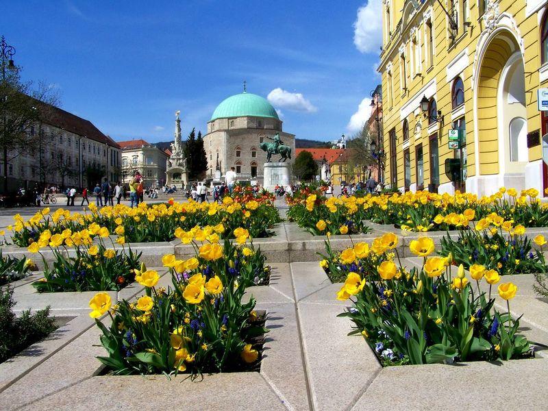 Campervakantie naar Pécs Hongarije