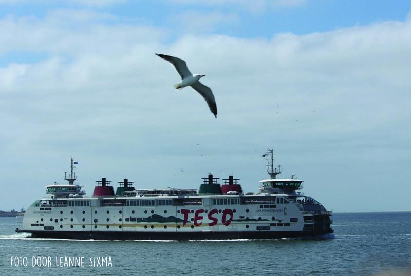 Met camper naar waddeneilanden Texel boot vogel