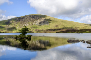 5 Things to Do in Dumfries and Galloway