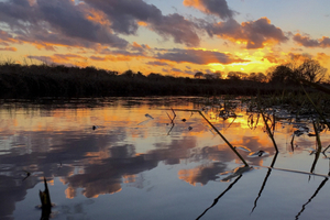 Fun Things to do in Norwich and the Norfolk Broads